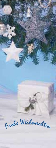 Weihnachtsbanner Premium Motiv 7